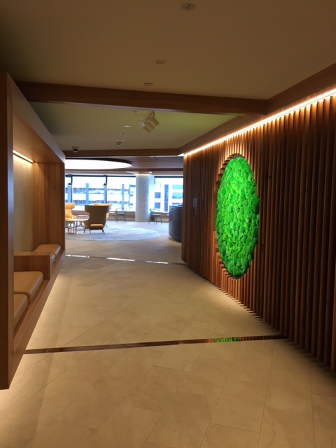 BOLL MOSS DOT AT DELOITTE