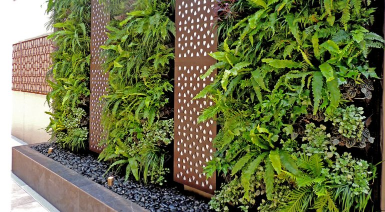 GREEN WALLS OR VERTICAL GARDENS