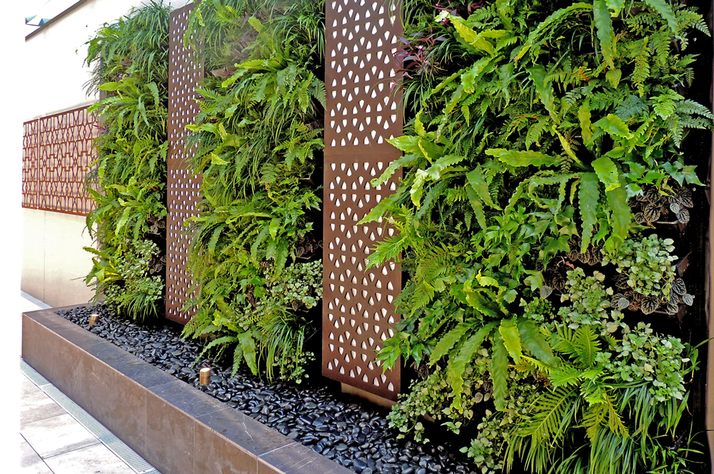 outdoor green wall at guilford rsl - Wall Garden