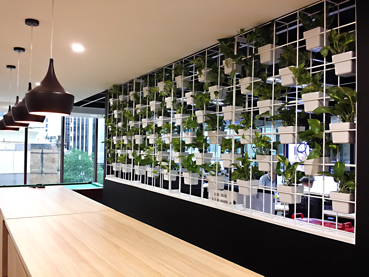 VERTICAL GARDEN AT NUDE BY NATURE