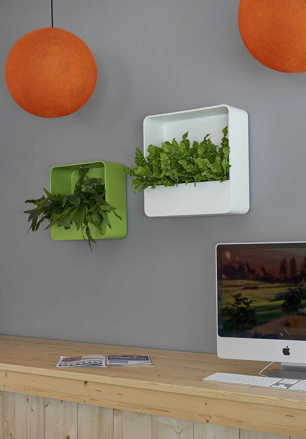 SQUARE WALL PLANTERS