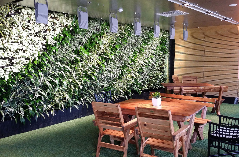 EMERGING OFFICE DESIGN ESSENTIALS: PLANTS