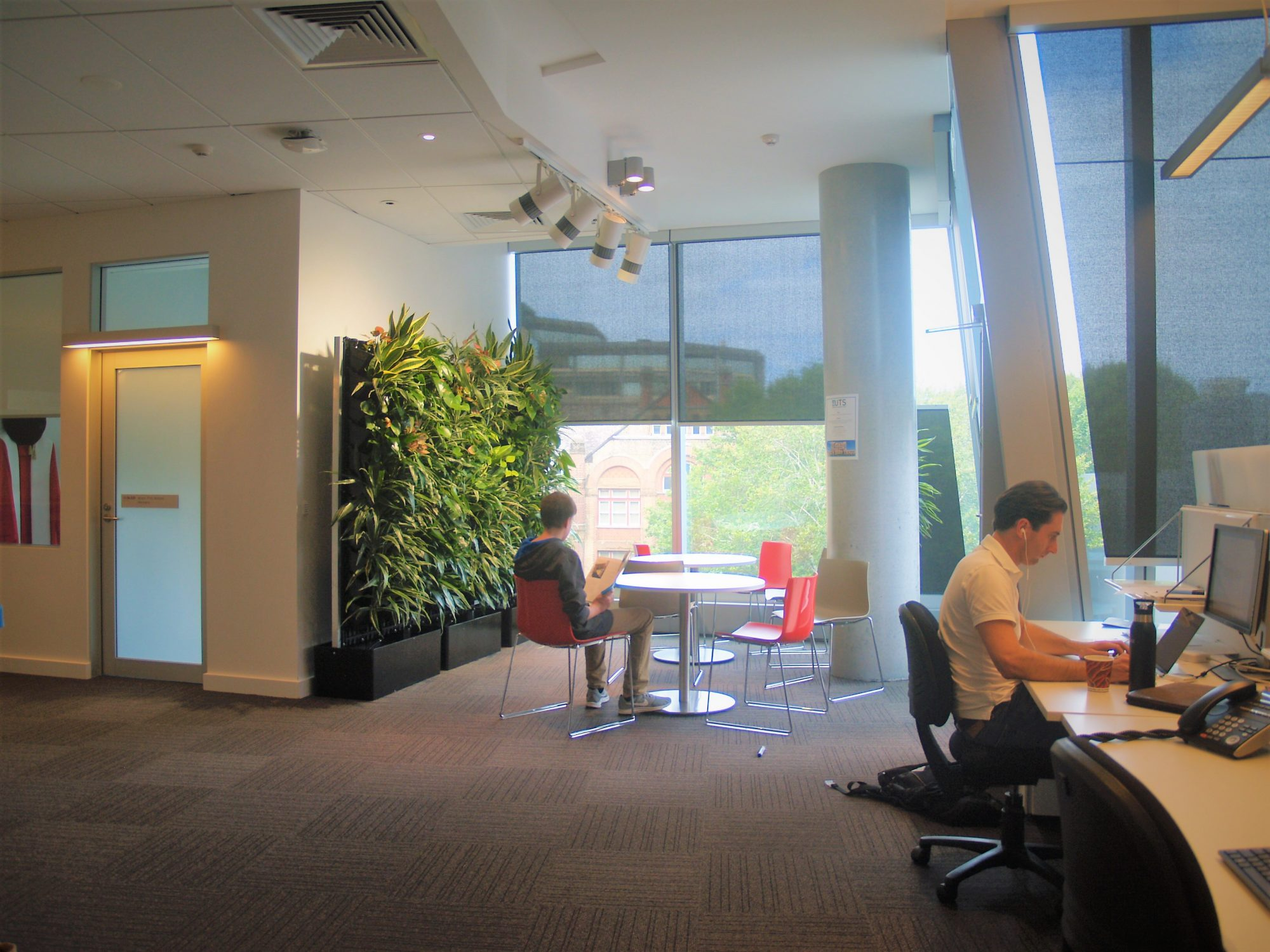 Green Walls, Vertical Gardens, Indoor Plant Hire, Office Plants