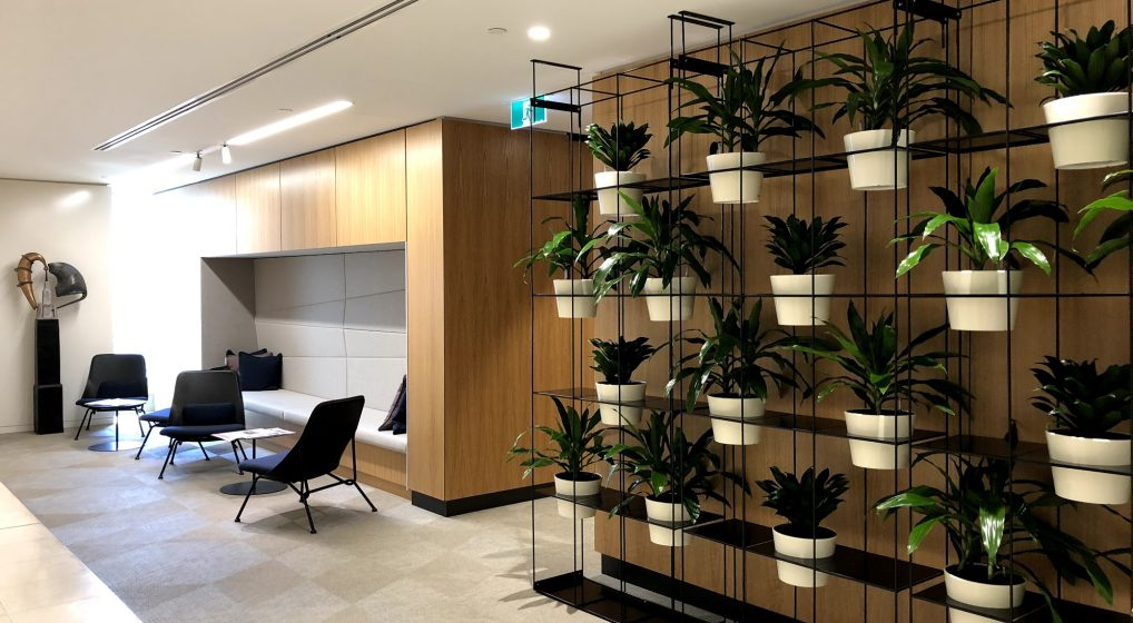 IN HOSPITALITY…LET YOUR PLANTS BE THE HOST