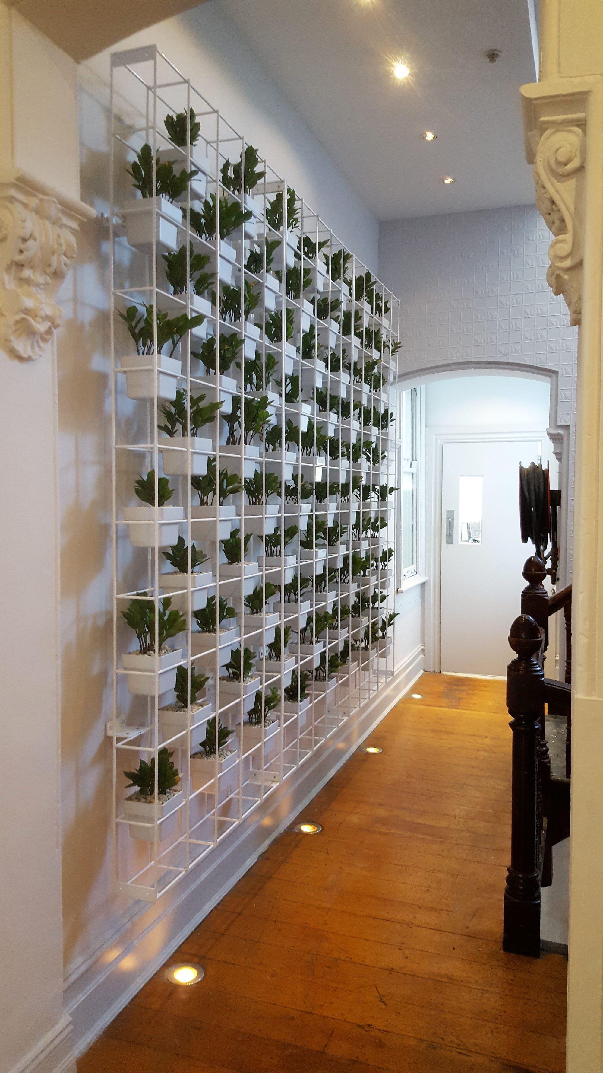 Vertical garden, indoor plant hire, office plant hire, vertical planting, vertical greenery, interior office design
