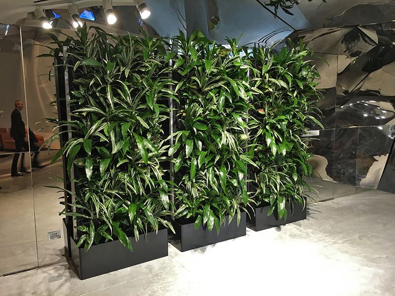 Free Standing Green Wall