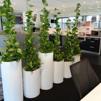 Rod Planter at KPMG Sydney