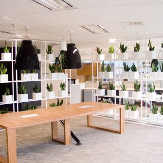 Plant Rack at Russell Investments Sydney