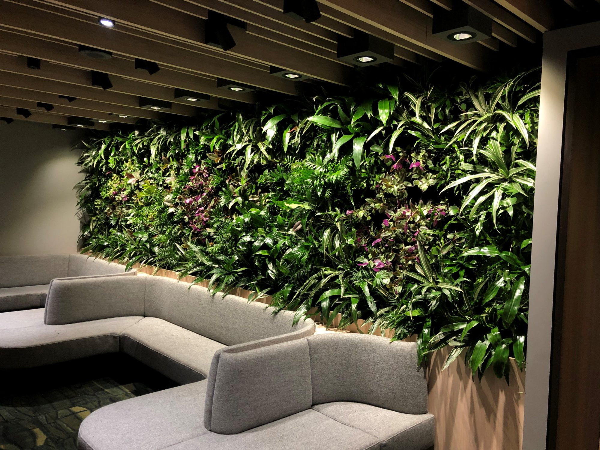 PLANTS WORKING FOR YOU…WHILE YOU WORK