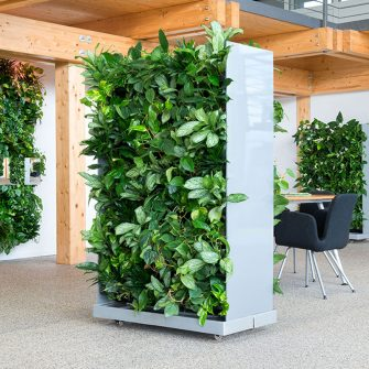 Mobile greenwall creates privacy