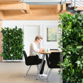 Mobile greenwalls clean the air