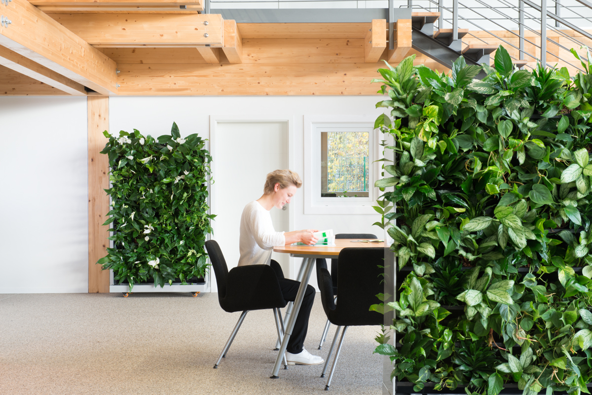 A MOBILE GREEN WALL AS A ROOM DIVIDER